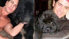 El dolor de Diego Ramos por la muerte de su perro Lorenzo
