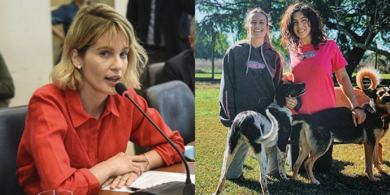 En el Día Nacional del Perro, los famosos que aman a los animales y son activistas