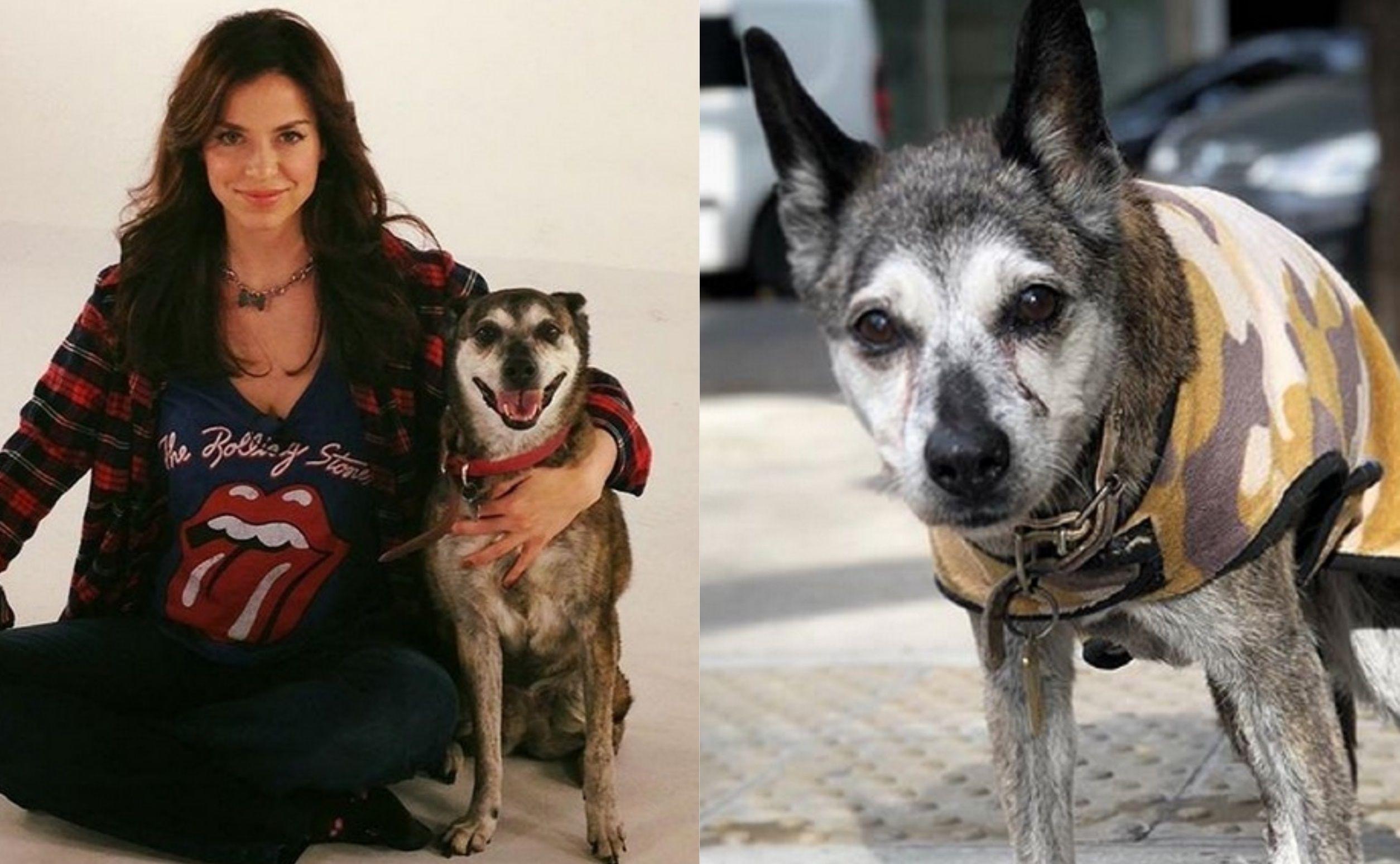 Conmovedora despedida de Mercedes Funes a su perra de 17 años