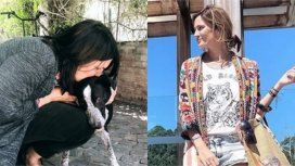 Paula Chaves logró el reencuentro de un perro con su dueña: Vale la pena involucrarse