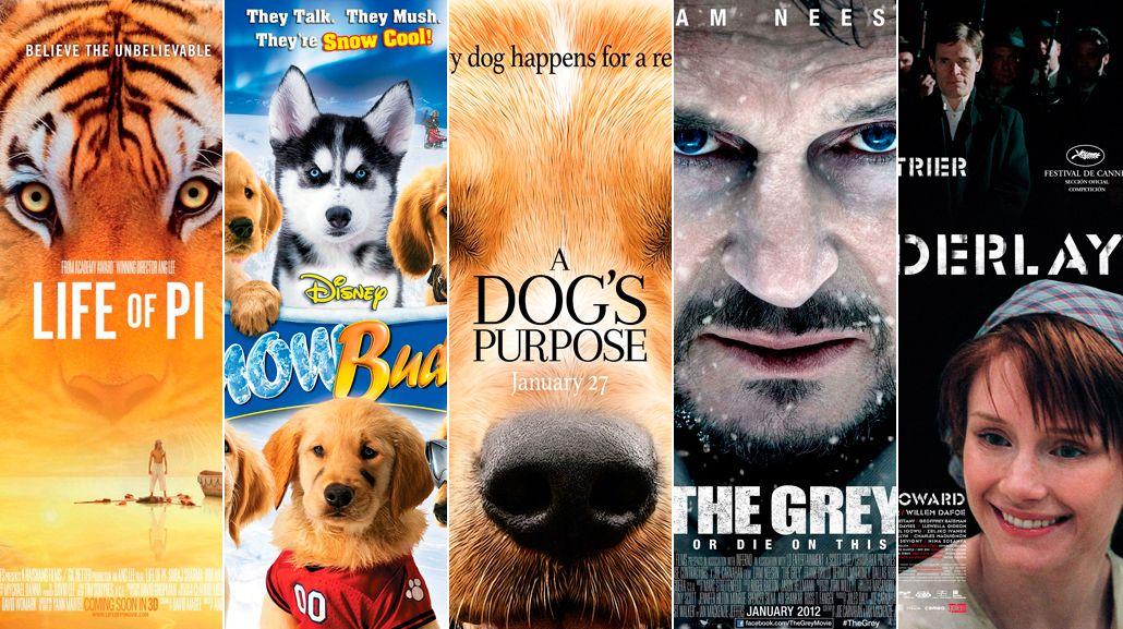 Maltrato Animal en las películas de Hollywood