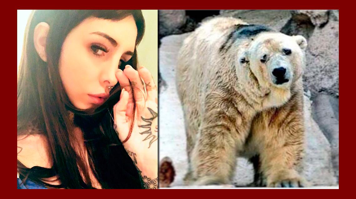 La angustia de Candelaria Tinelli por la muerte del oso Arturo: Cada entrada te fue matando