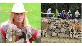 Susana reclama por el zoo de Mendoza: No se puede ver sufrir así a los animales