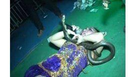 Famosa cantante murió sobre el escenario tras ser mordida por una serpiente venenosa