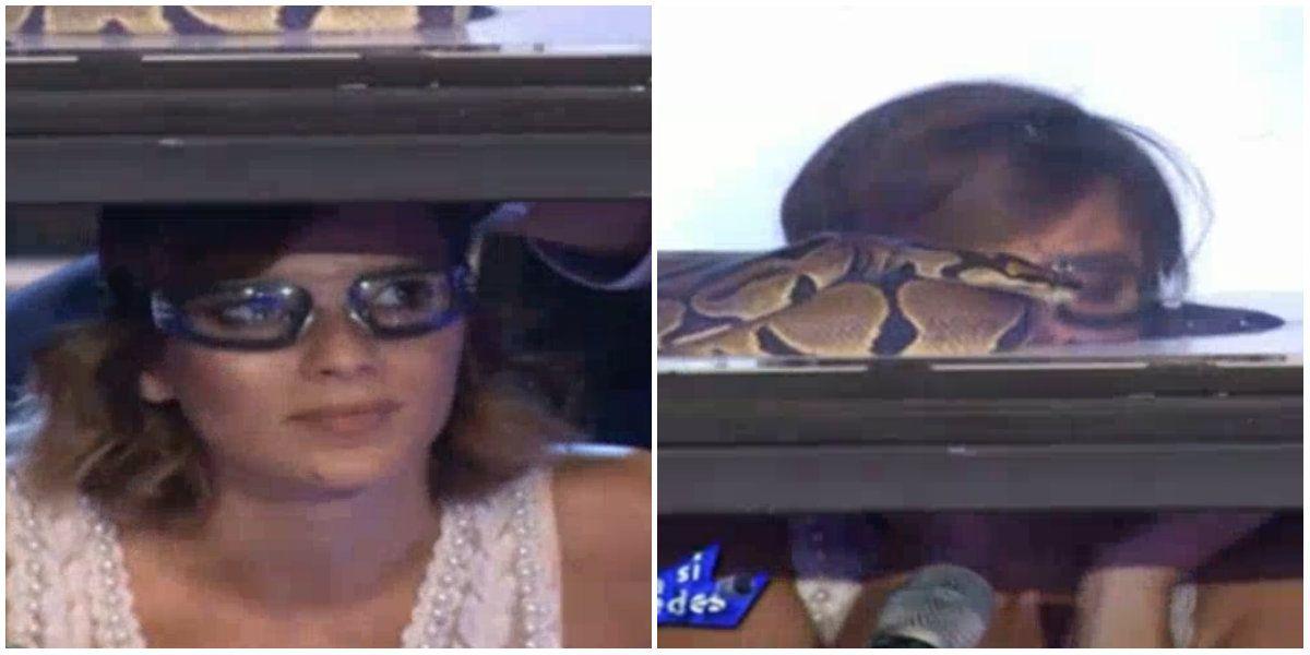 Gimena Accardi superó su fobia a las serpientes animándose a una jugada prueba