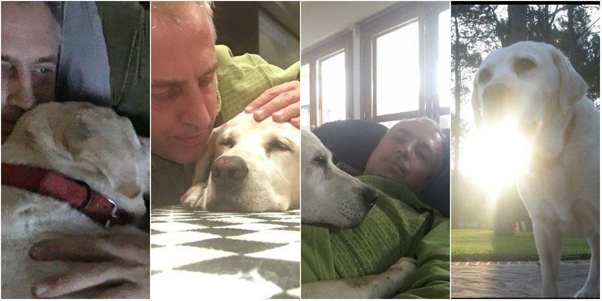 El conmovedor mensaje de Marley por la muerte de su perro Wylie: 13 años juntos, gracias por tanto amor y tanta luz