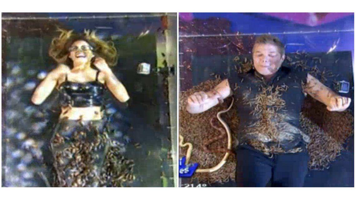Fernando Burlando y Barby Franco, desesperados en Canta si puedes: les tiraron gusanos, arañas y dos mil cucarachas