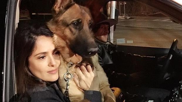 Salma Hayek agradece el apoyo por la trágica muerte de su perro e investiga quién lo mató