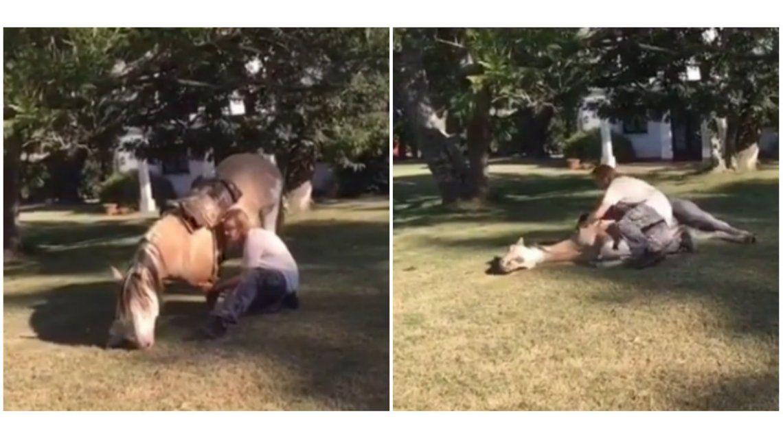Facundo Arana y un video muy tierno con un caballo: El que debe domarse es el ser humano