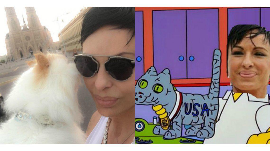 Insólitos memes por el gato embalsamado de Daniela Cardone