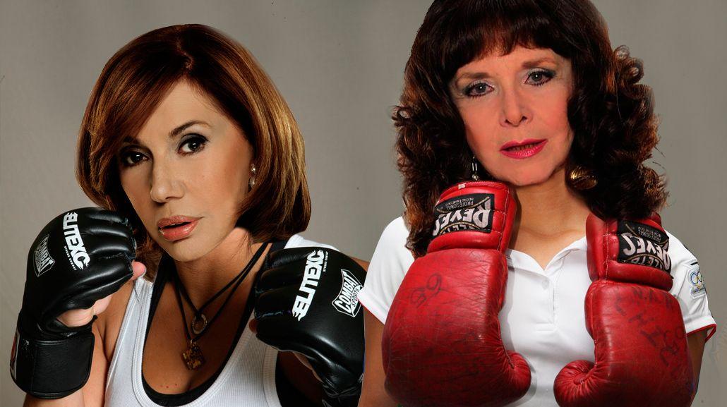 Escándalo: Nora Cárpena y Zulma Faiad, enfrentadas en Mar del Plata