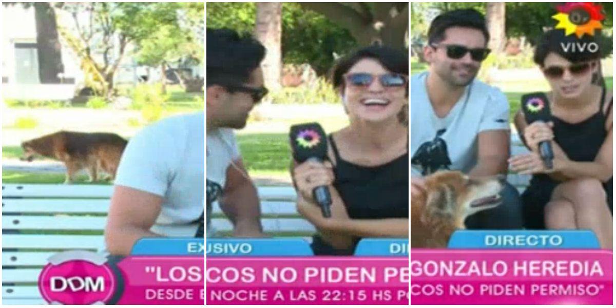 Agustina Cherri y Gonzalo Heredia, juntos en un móvil: perlita con un perro y chistes de doble sentido
