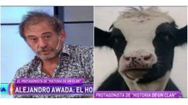 Increíble anécdota sobre la grabación de la escena con la vaca: Fue milagroso