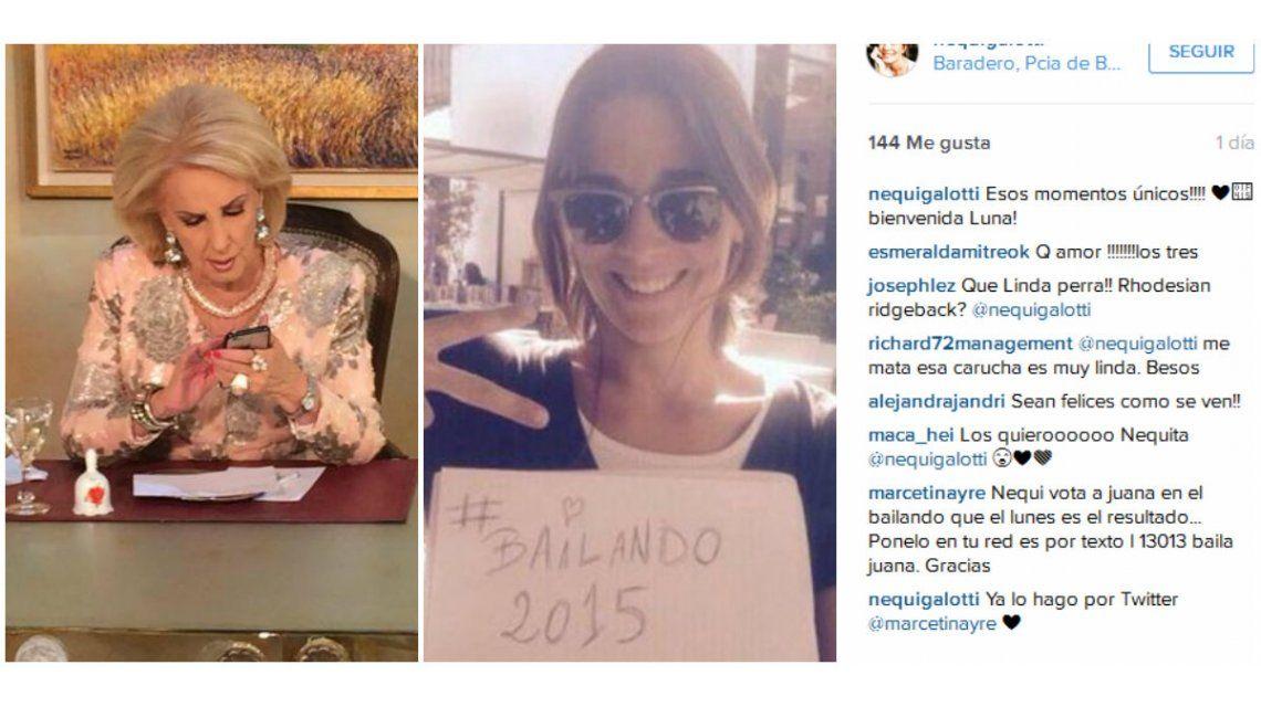 La campaña quema bocho de la familia Tinayre para apoyar a Juana Viale en ShowMatch