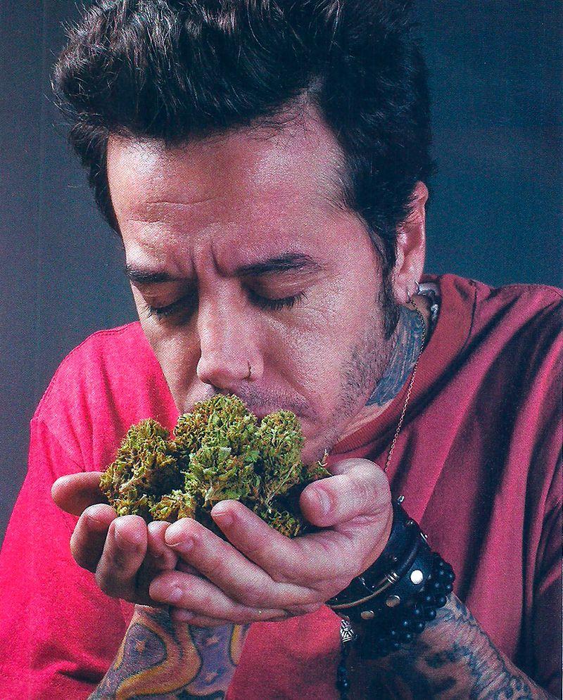 El amor de Sebastián Ortega por la marihuana y sus alusivos tatuajes: Conocí la planta y me enamoré