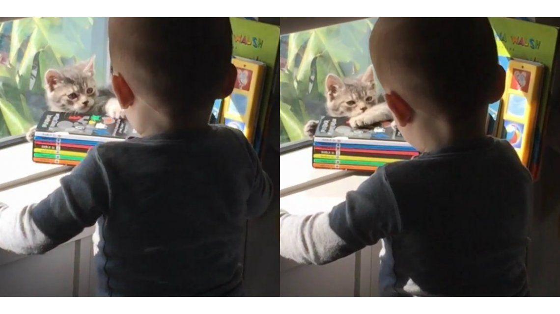 El tierno video de Lorenzo Tinelli con su nueva mascota, Dani
