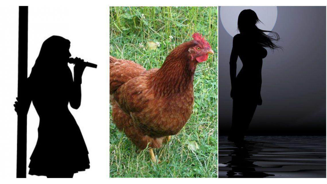 Una estrella de Hollywood, denunciada por robarle una gallina a una cantante