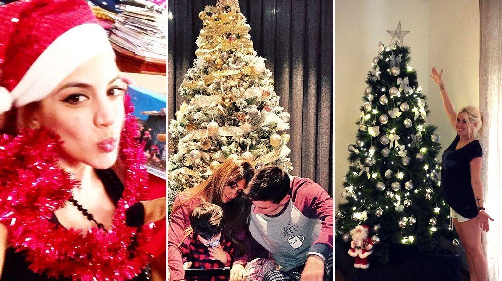 Palpitando Navidad: Los famosos armaron su arbolito