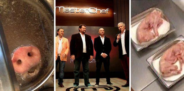 Después del hocico de cerdo de Narda Lepes, ahora en Masterchef cocinaron un conejo bebé