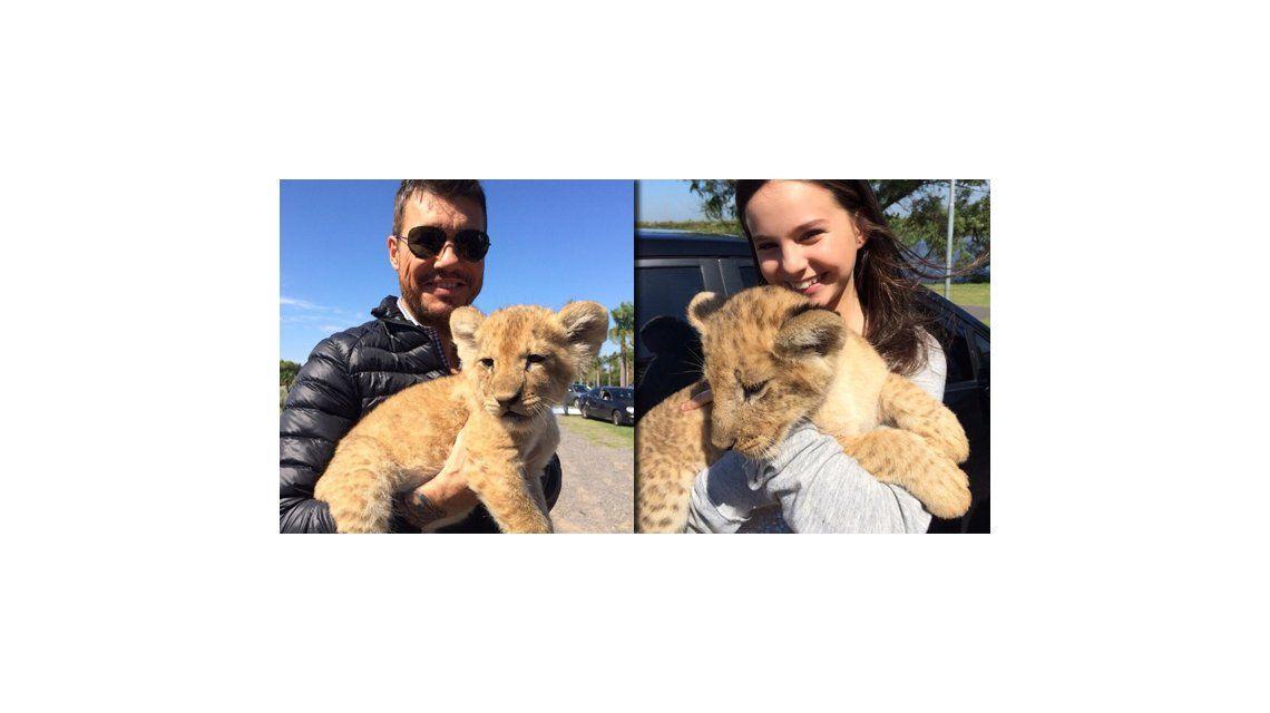 Apertura Showmtach 2014: Marcelo Tinelli grabó con su hija Juanita y un león