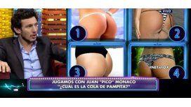 Pico Mónaco adivinó en televisión cuál es la cola de Pampita