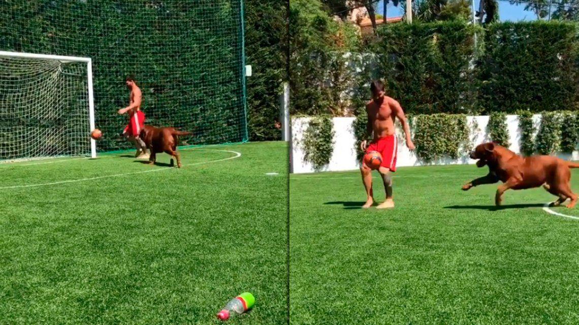 Messi volvió loco a su perro ante la mirada de sus hijos