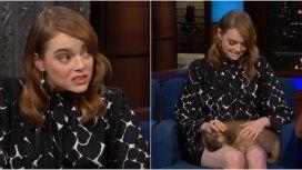 Emma Stone, junto a un perrito rescatado en una entrevista.