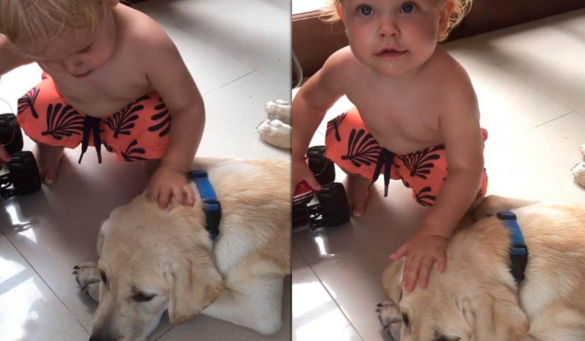 El tierno video de Mirko acariciando a su perrito Bailey