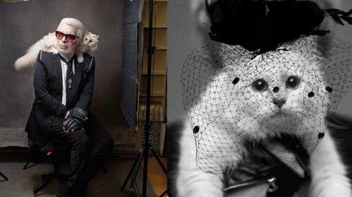 El triste mensaje de Choupette, la gatita heredera de Karl Lagerfeld
