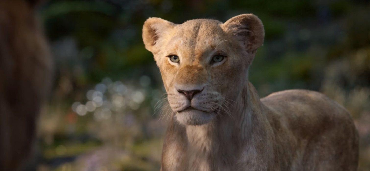 Nuevo adelanto de El Rey León: así será la voz de Beyoncé como Nala