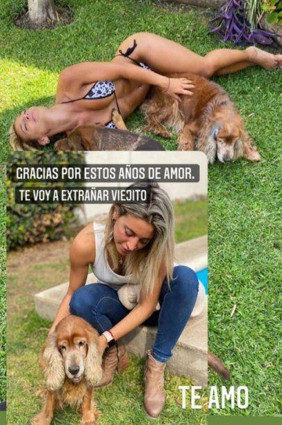 Despedida de Sol Pérez a su perro.