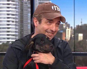 Ricardo Darín se encontró un perro en la calle y lo llevó a la televisión para encontrar al dueño